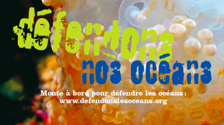Journée mondiale des océans le 8 juin